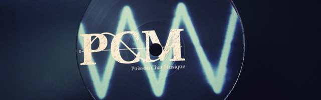 Poisson Chat Musique Independent Electronic Music Record